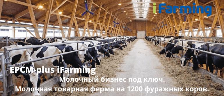 """EPCM plus контракт с ООО """"Интеллектуальное животноводство"""" позволяет создать агробизнес под ключ с гарантированным результатом."""