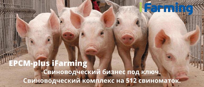 iFarming - реализует инвестиционные проекты в сельском хозяйстве под ключ.
