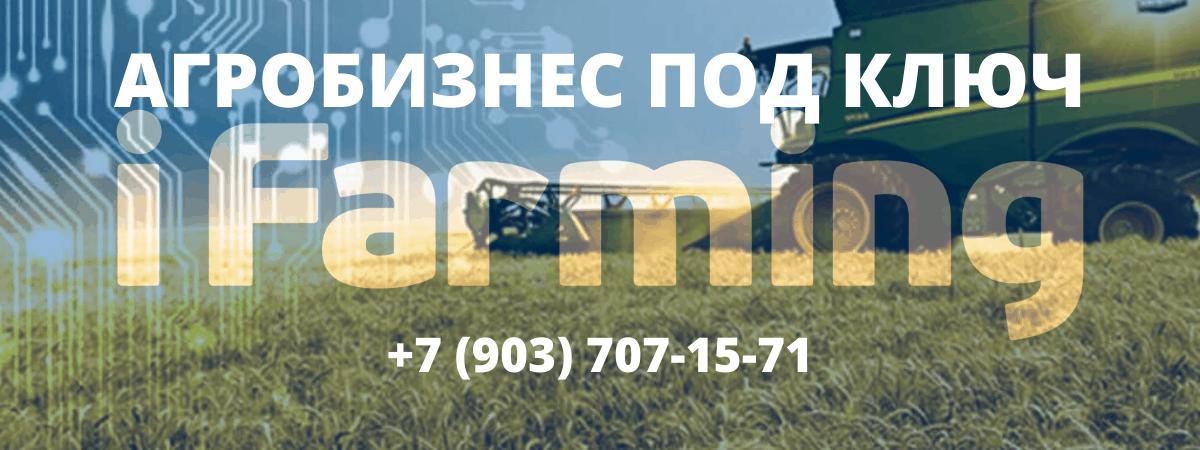 Как позвонить в iFarming и заказать бизнес в сельском хозяйстве